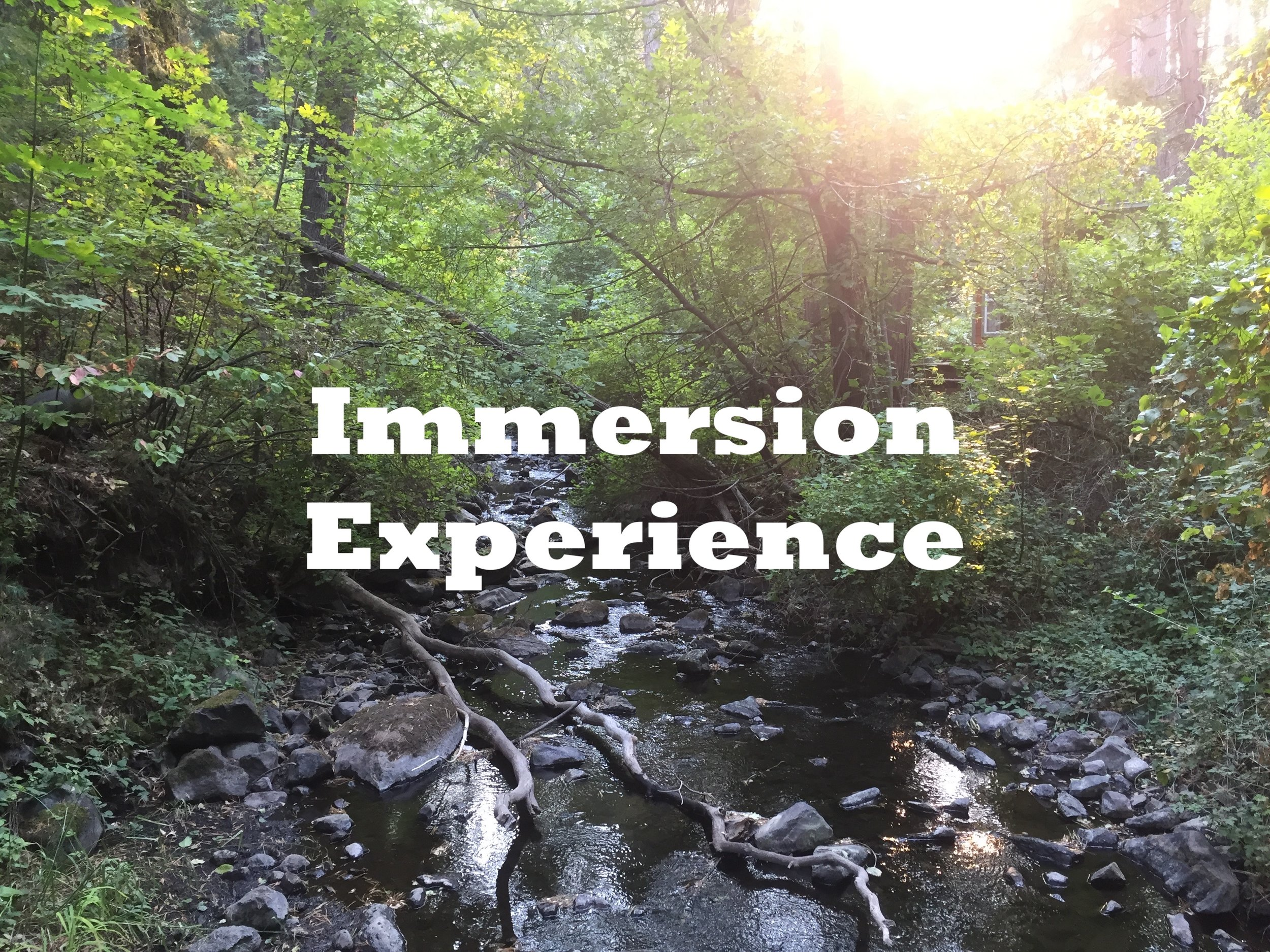 Click on the photo to learn more about our Immersion Experience, here at Energy is Everything Experience in Mount Shasta, CA