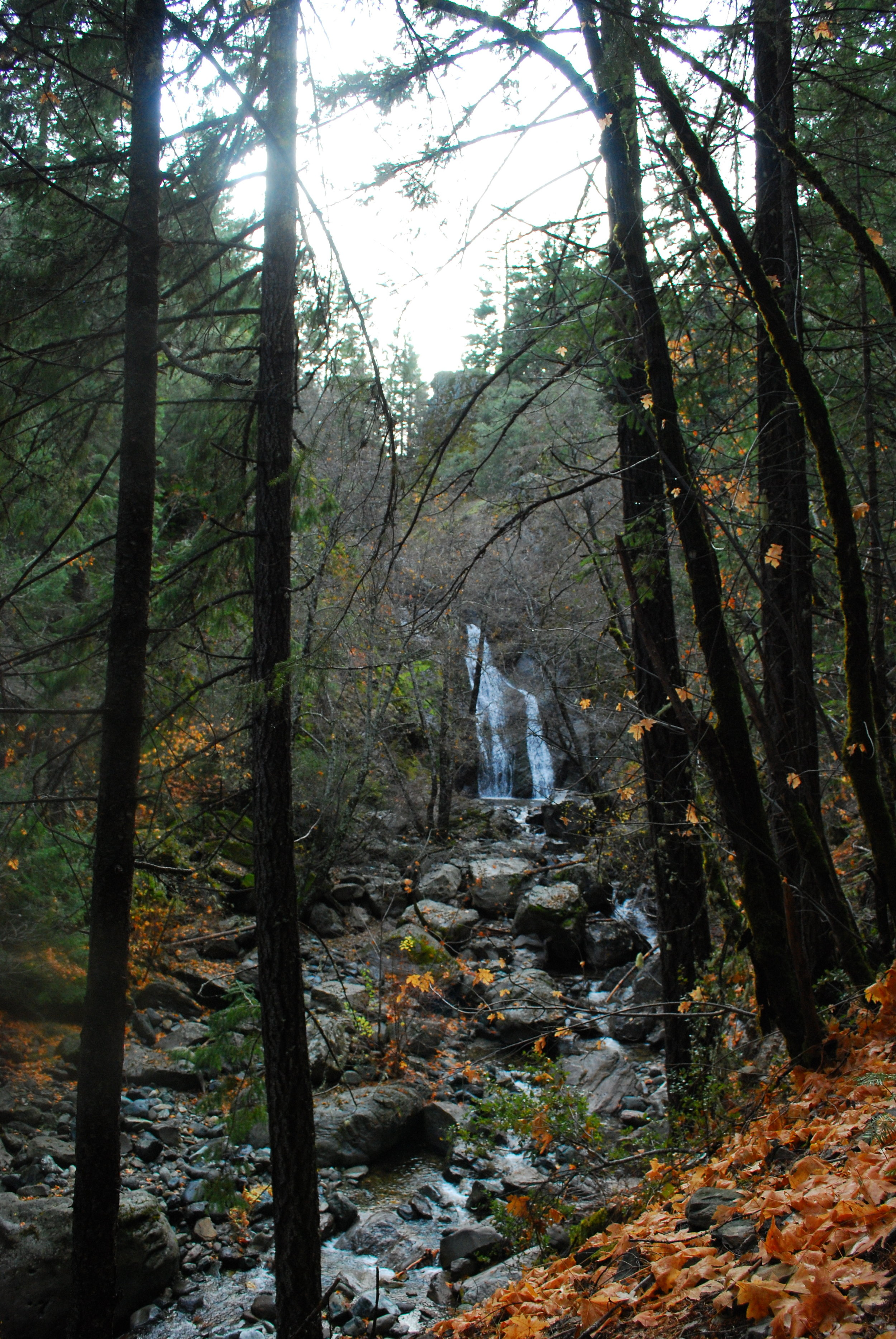 Excursion - Ney Springs & Faery Falls with Gage and Casey