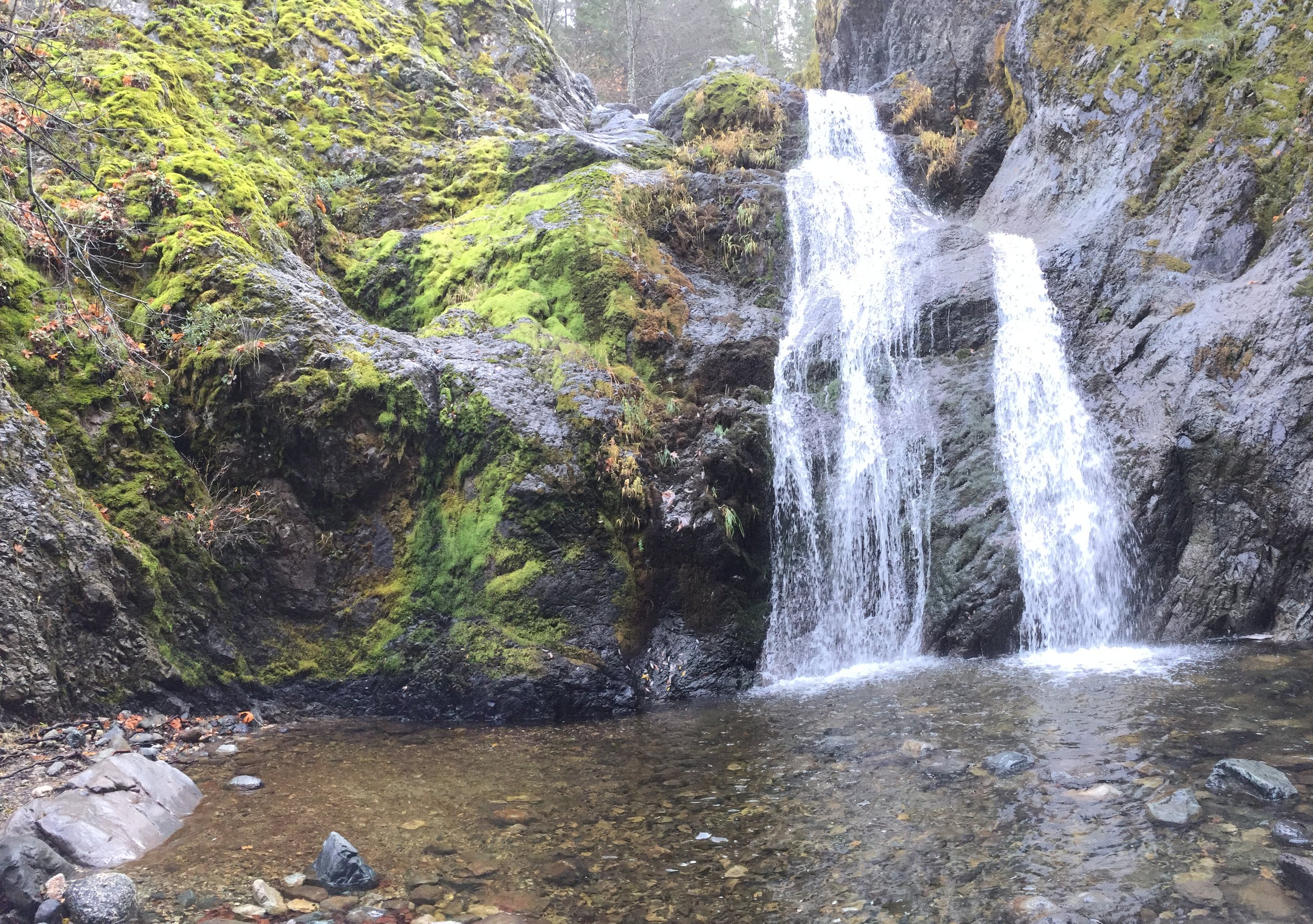 Excursion - Faery Falls with Gage and Casey