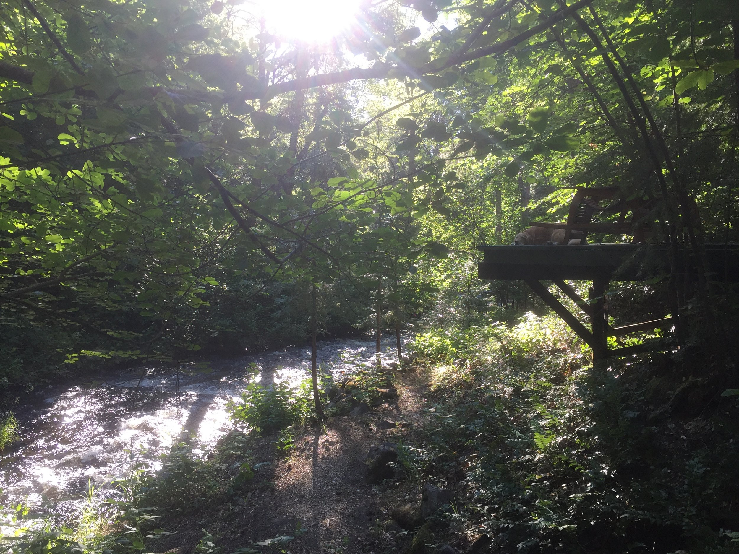 Wagon creek flowing through the wellness realm of energy is everything. The deck to the right allows for one to sit and enjoy the sounds of the water, birds, chipmunks and more.. Many are swept deep into the experience of self and feel an amazing sense of grounding.