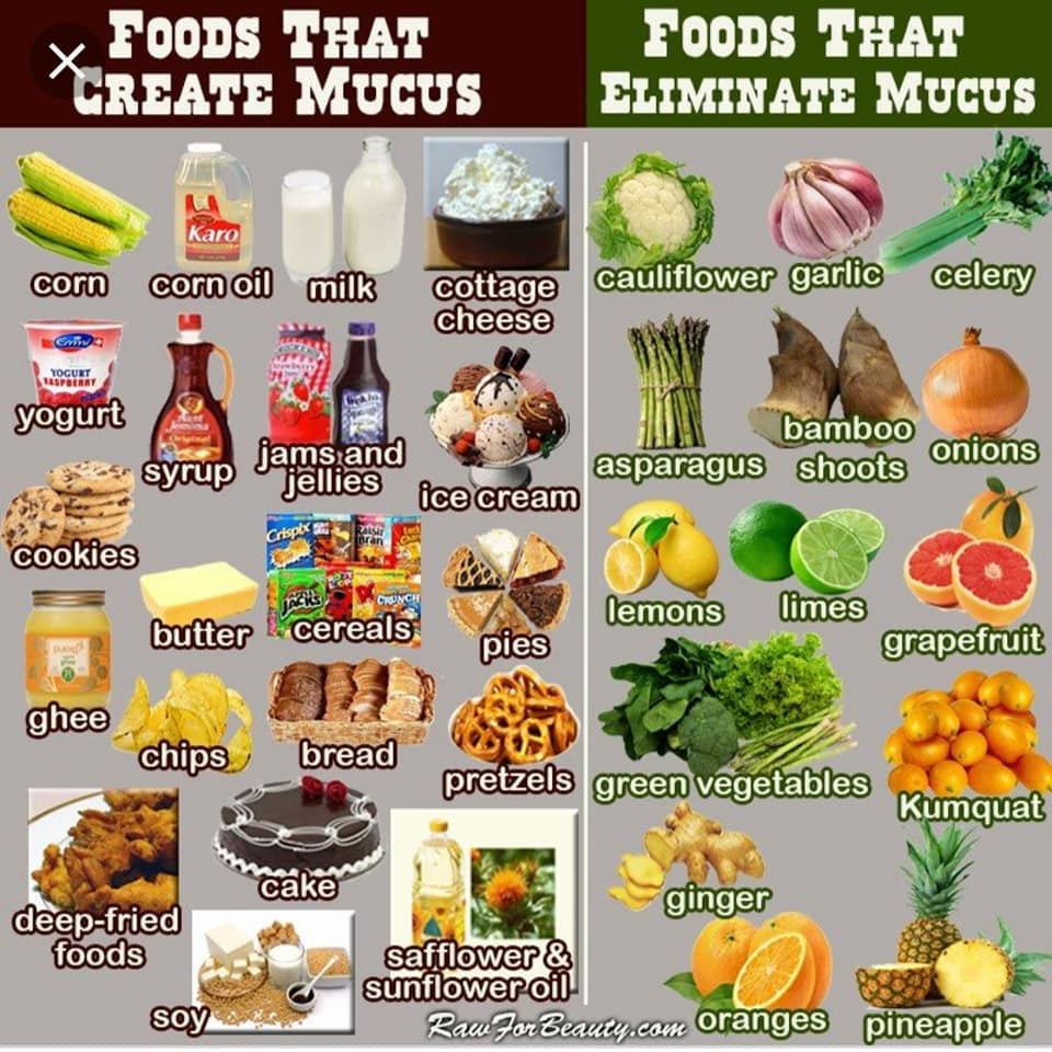 Foods that Create Mucus & Foods that Eliminate Mucus