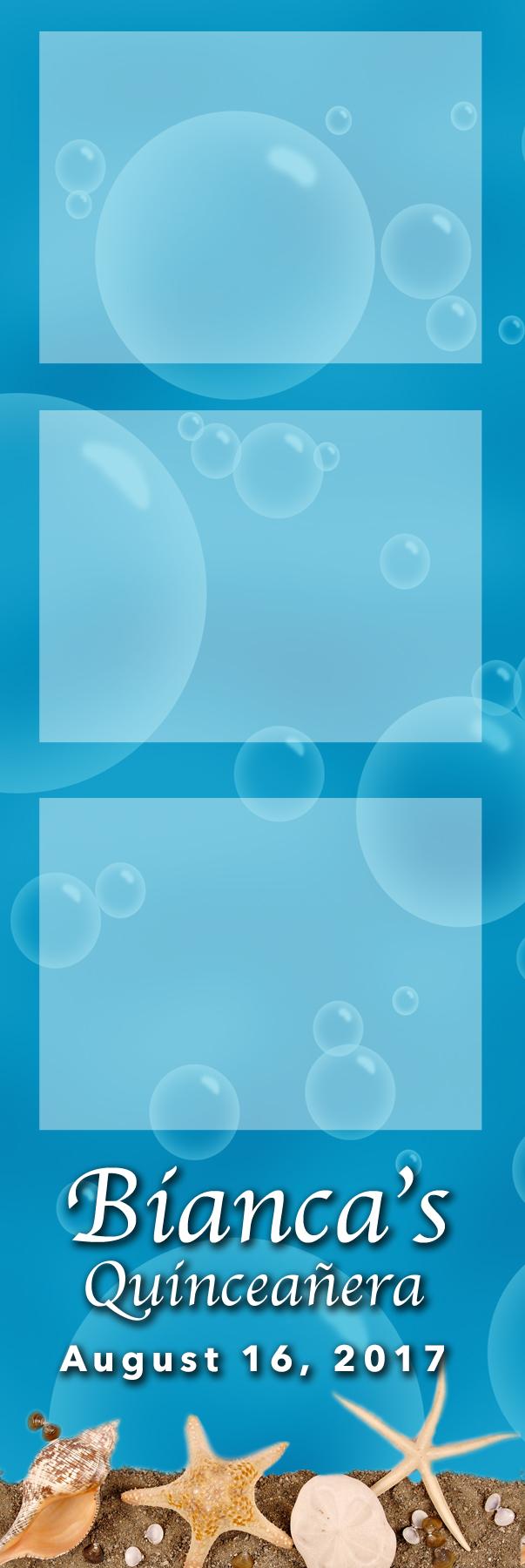 2x6 sea shells blue Web.jpg