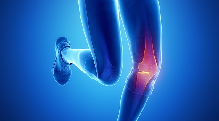 ACL-injuries-women-soccer-player-information-on.jpg