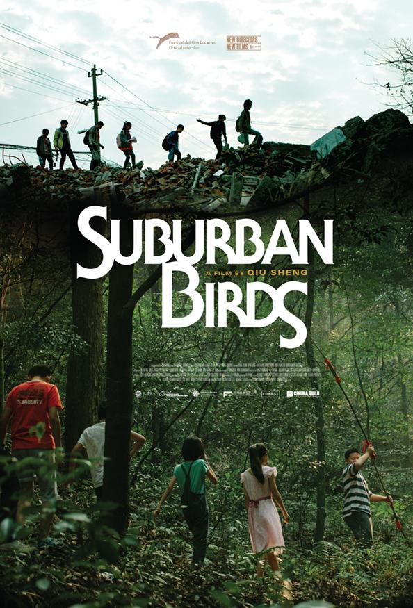 suburban_birds.jpg