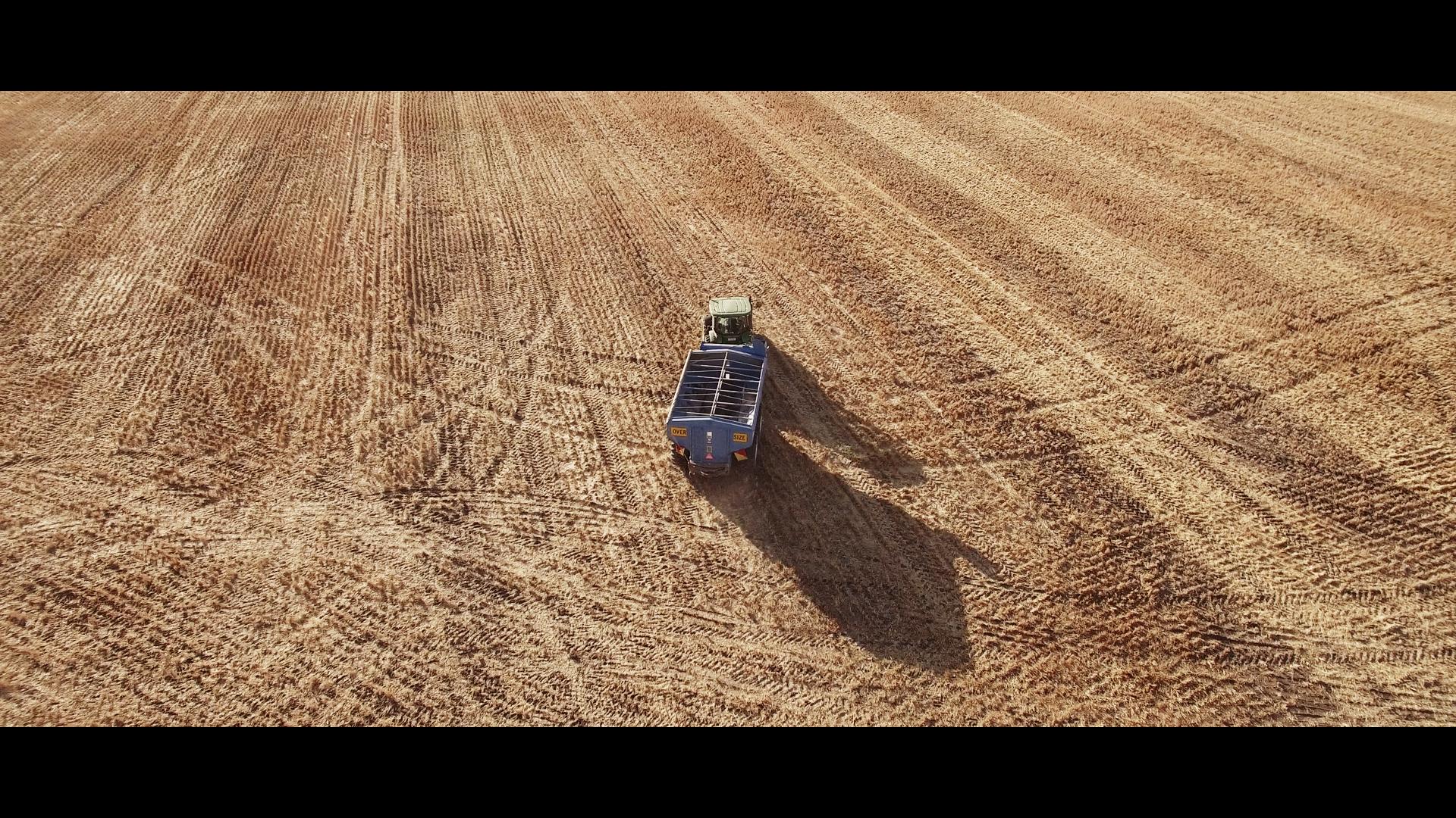 Harvest_1.434.1.jpg