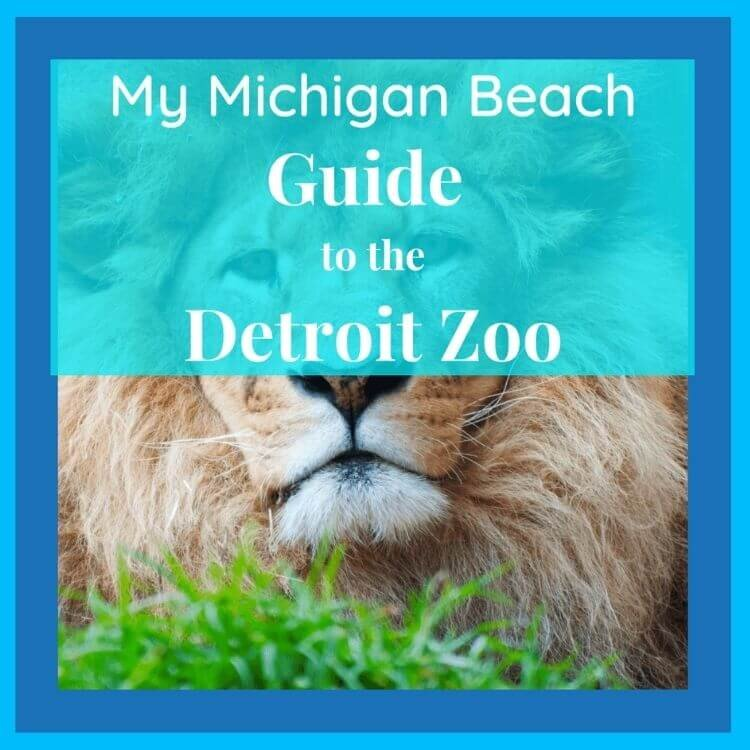 Detroit Zoo 2021 Guide What To See And Do Mymichiganbeach Com