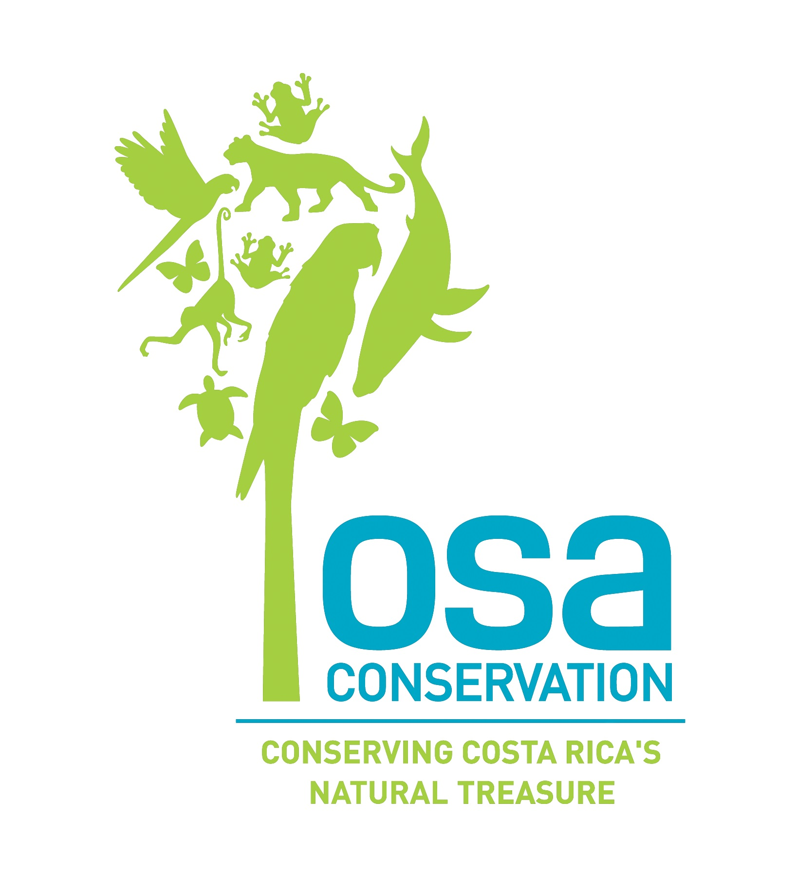 - Who is our NGO partner?Osa Conservation is committed to conserving the globally significant terrestrial and marine biological diversity of the Osa Peninsula in Costa Rica. Osa Conservation believes in a holistic approach to conservation, one grounded in the ecological, social, and economic relationships that shape the environment. Named by National Geographic as