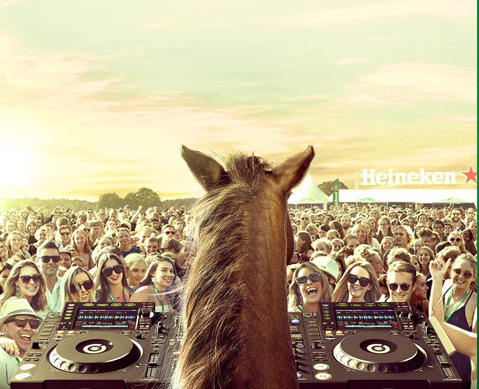 """Uhu"", the equine thoroughbred DJ lays down the hoof beats."