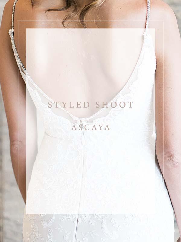 _portfolio_ido_details_lv_Ascaya.jpg