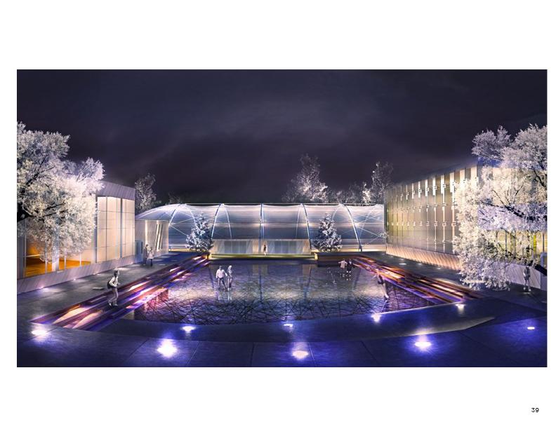 Skating rink/wading pool