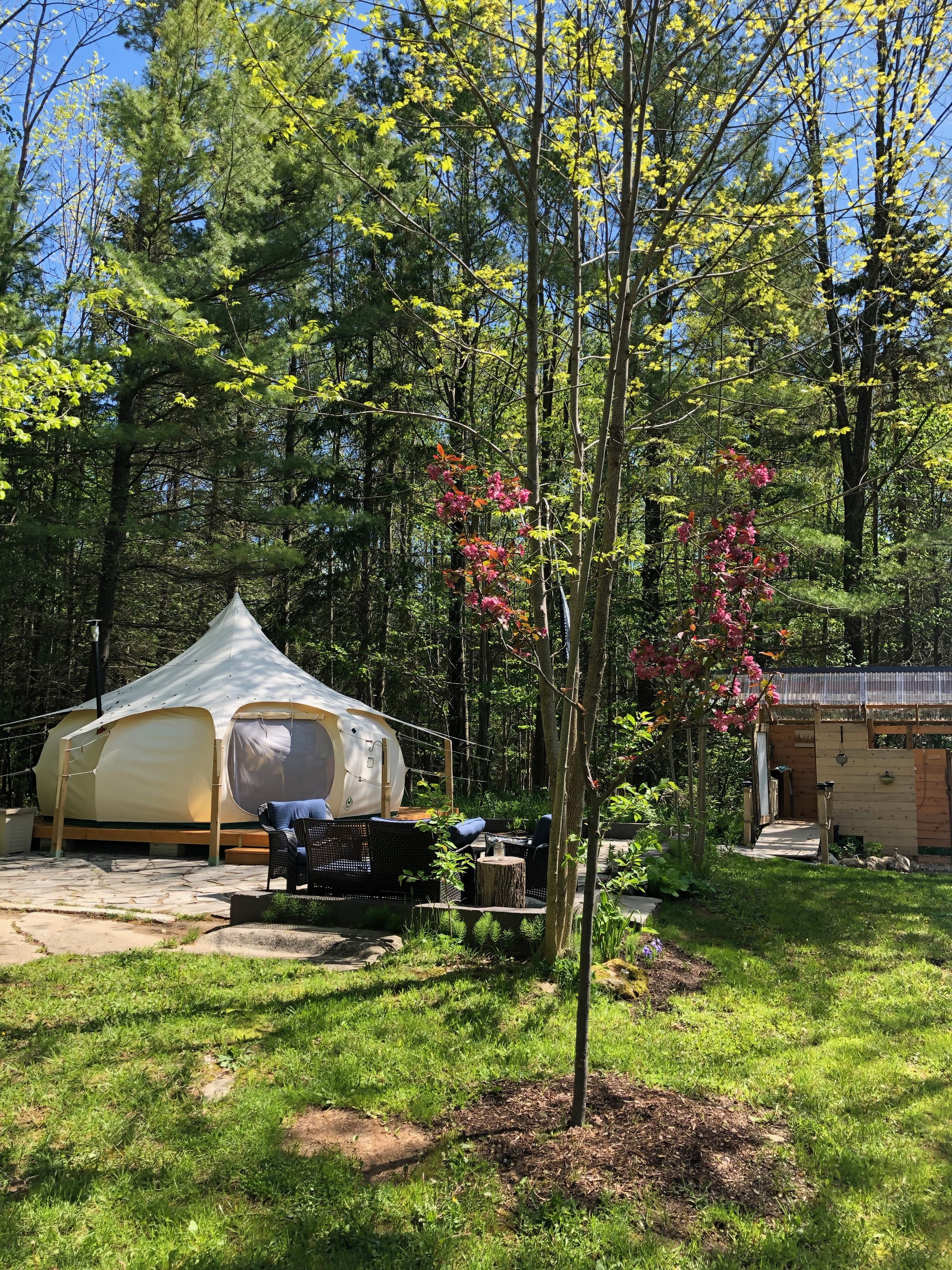 melissatwistevents_glamping_collingwood_bluemountaineventplanner 108.jpeg