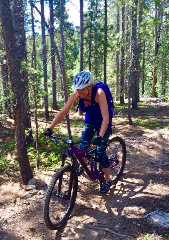 Summer on the  Sheep Creek Trail  near Fairplay, Colorado.