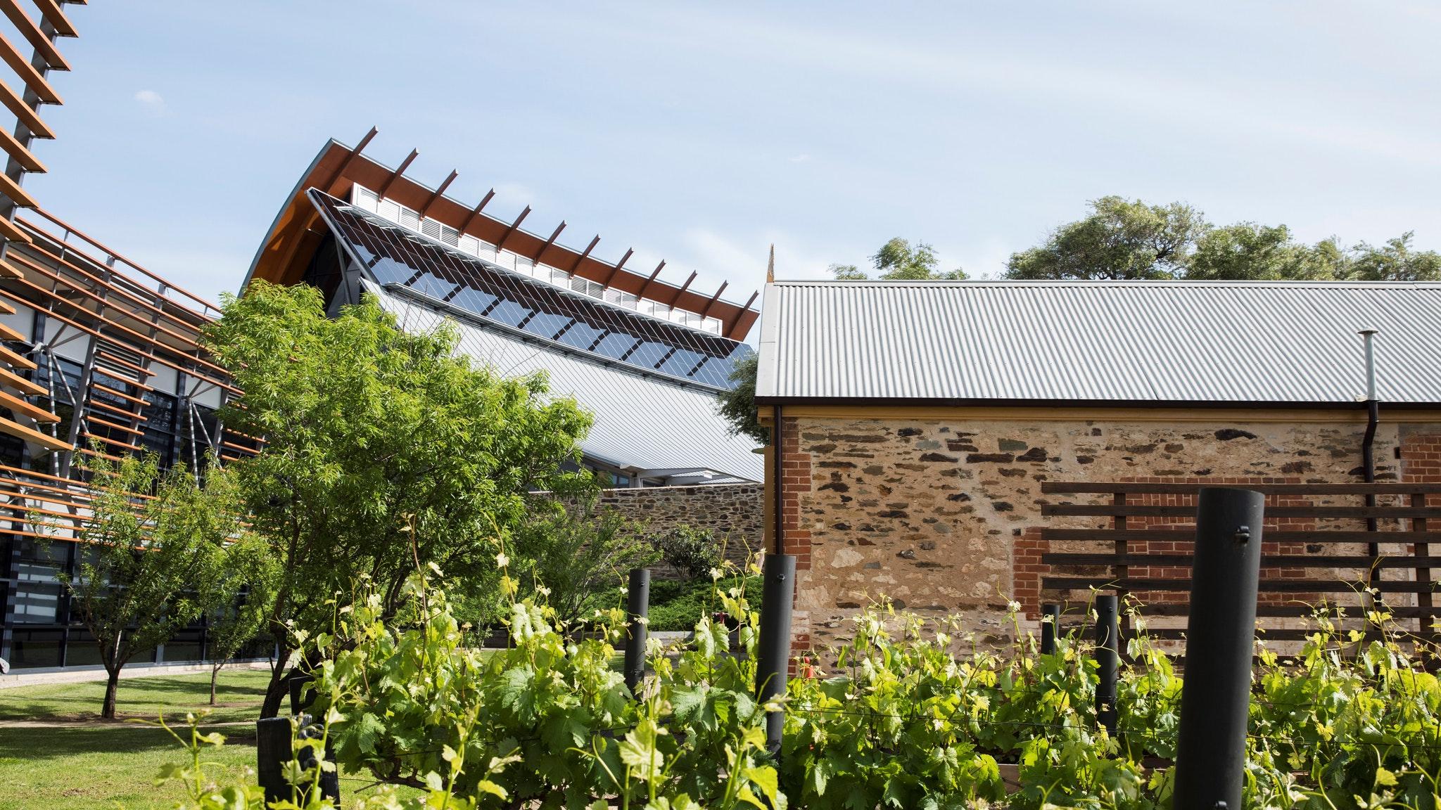 National-Wine-Centre-Australia-1.jpg