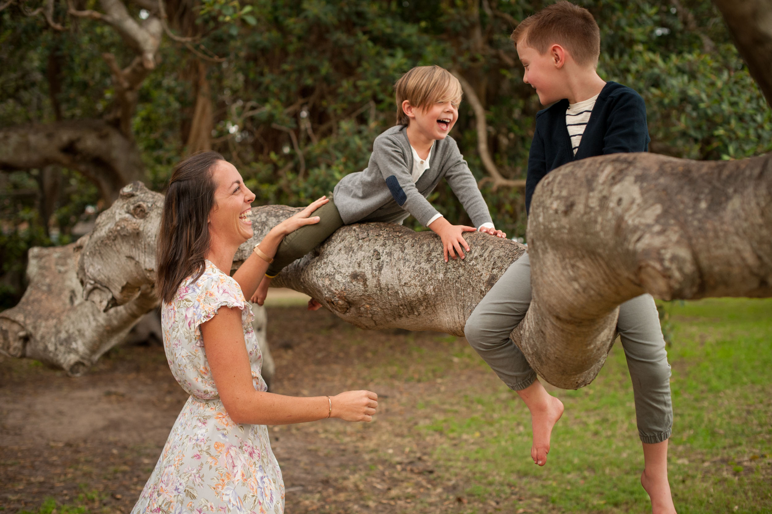 nature tree climbing kids photos central coast nsw