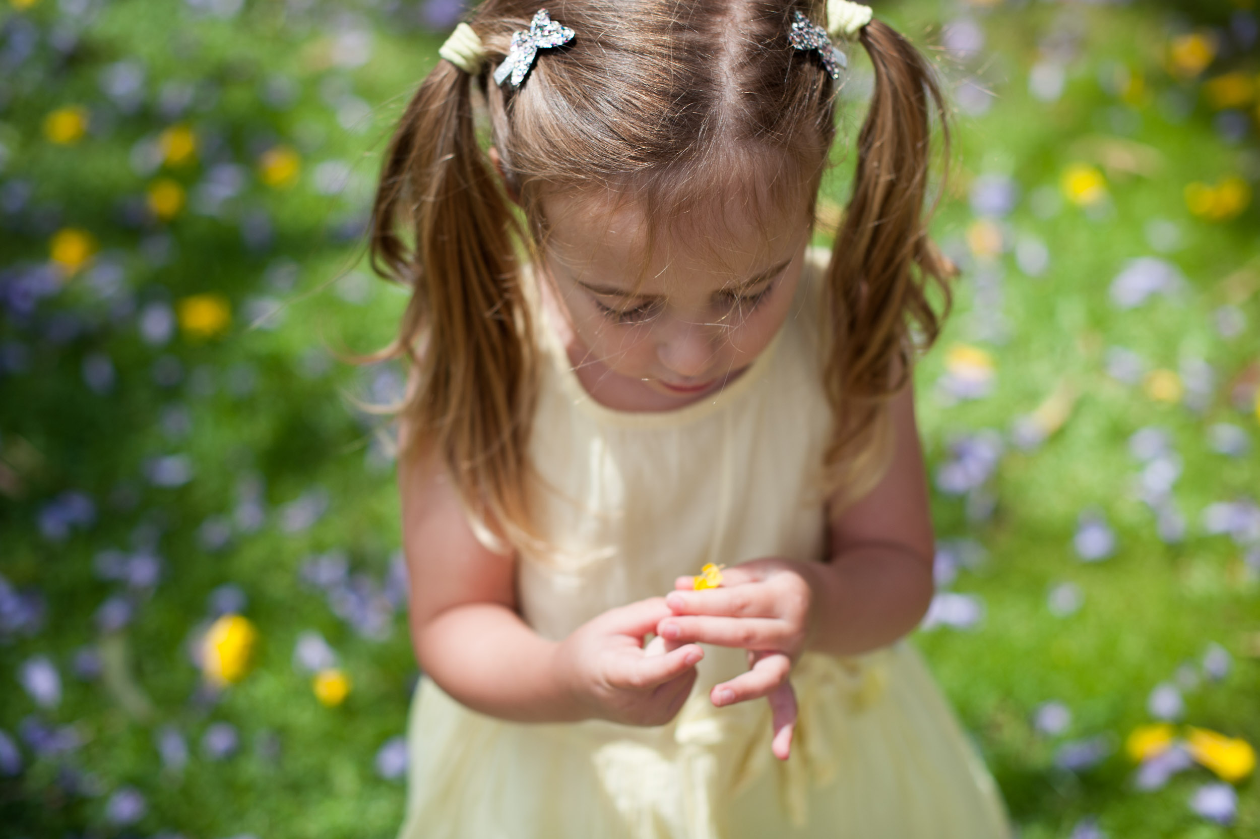 picking flowers in the garden