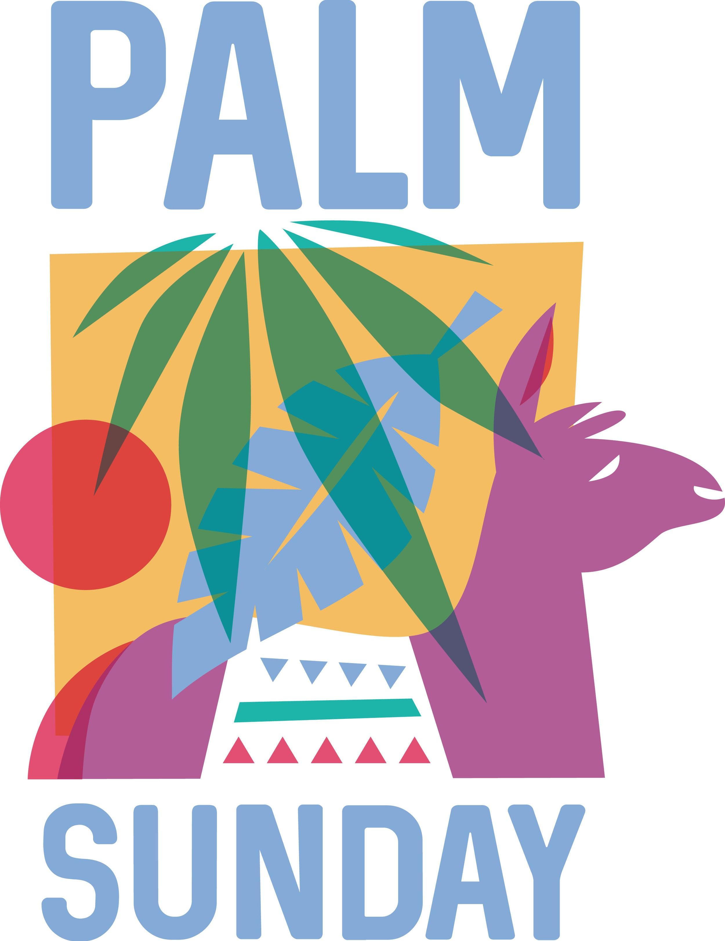 palm_18555c.jpg