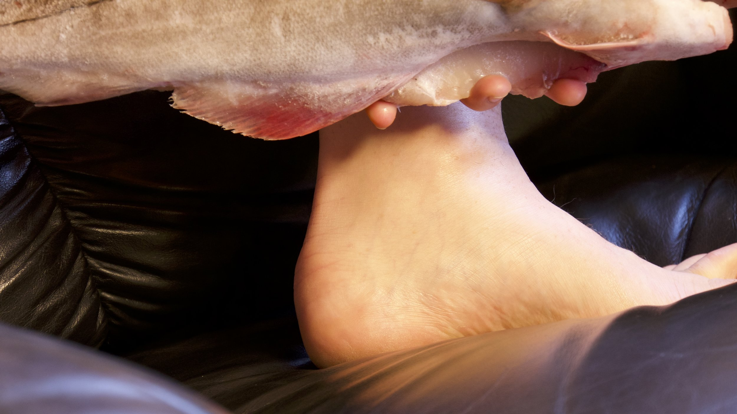 fishfoot.jpg