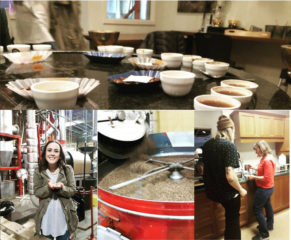 Our visit to Fratello, where we learned about their beans, brewing methods, and latte art!