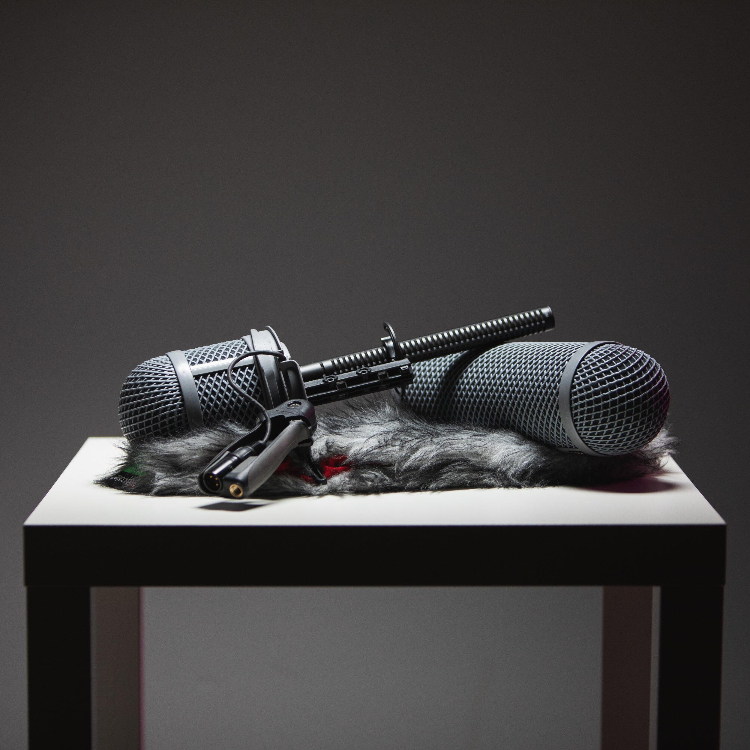 Shure VP89S Shotgun Microphone
