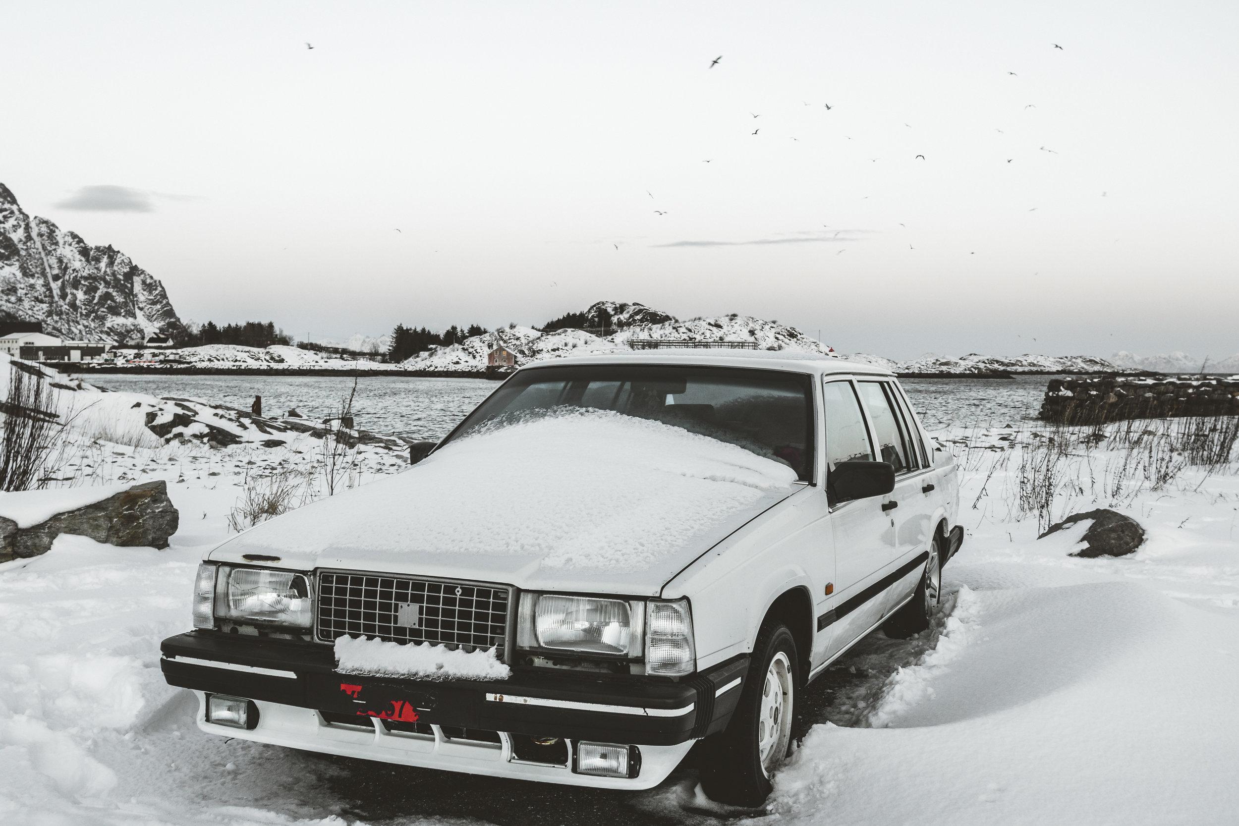 Snowy hood