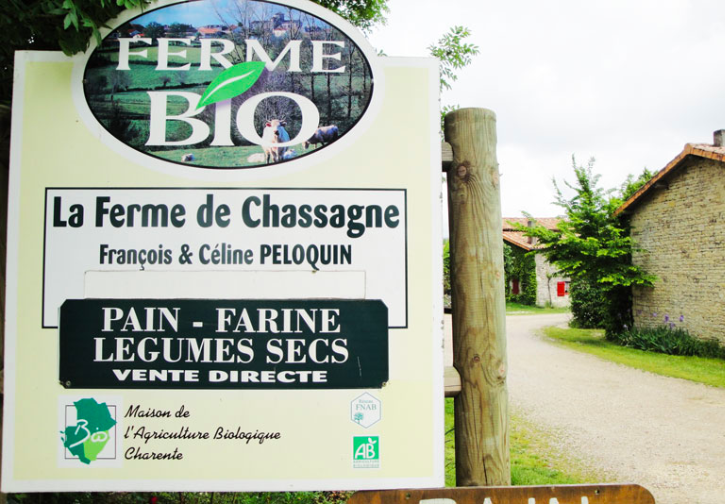 La Ferme de Chassagne - 100% BIOLe GIE Ferme de Chassagne est un groupement d'agrobiologistes, basé en Charente (16), spécialisé dans la transformation (stockage, triage, calibrage, conditionnement) et la commercialisation de légumes secs.Associés pour valoriser les productions du terroir par une démarche collective, de qualité et de proximité, les producteurs gèrent eux-mêmes les activités du GIE et la vente de leurs produits.