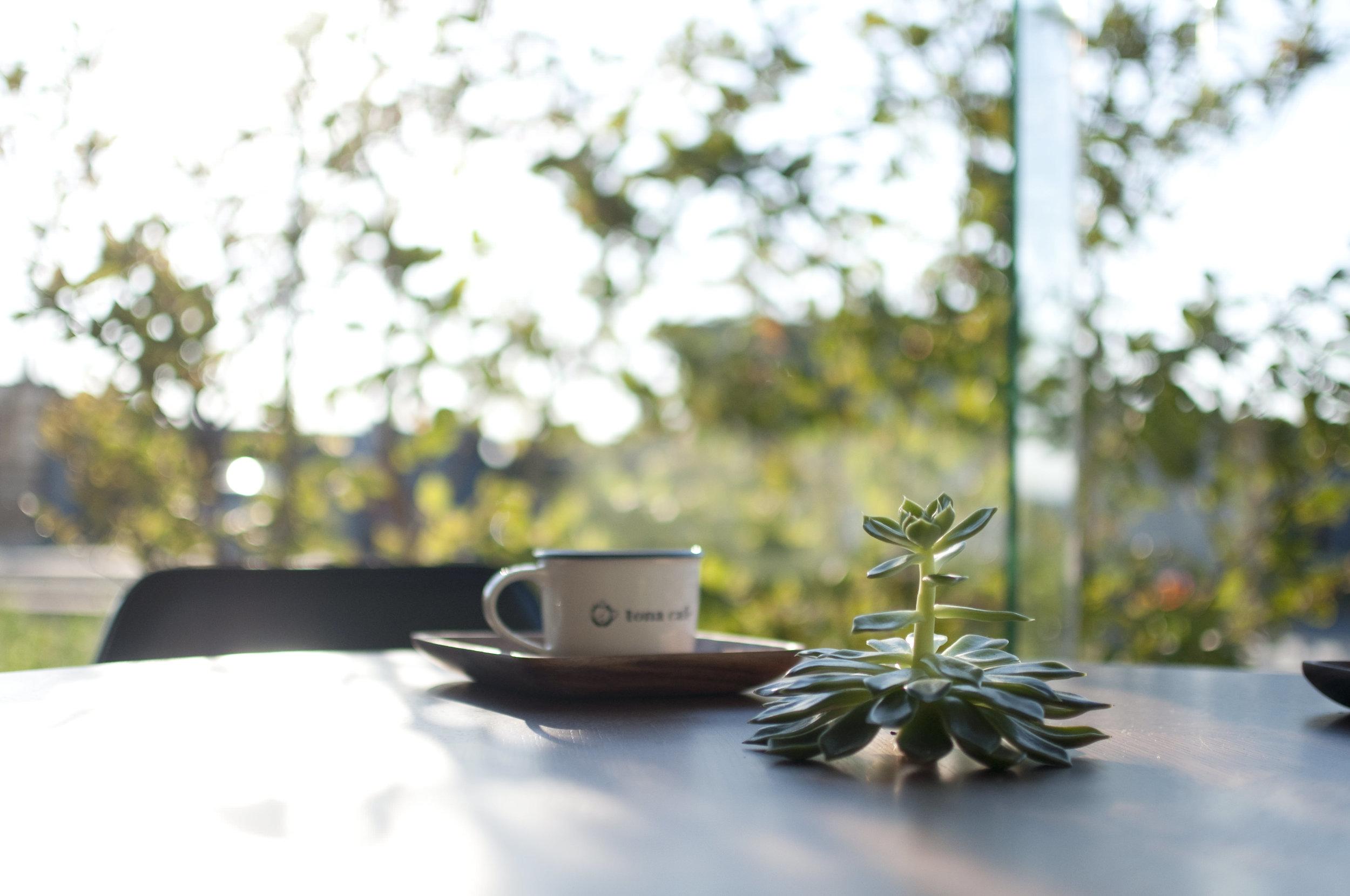 tona cafe トナカフェ 成正建装 愛知県 犬山市 新築 リフォーム 古民家再生 家づくり7.jpg