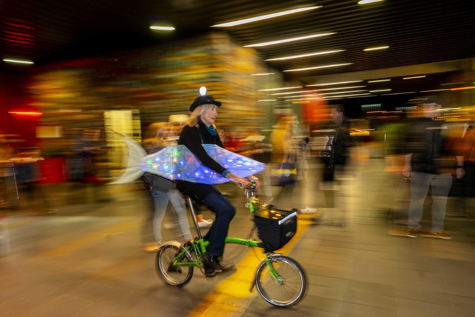 IMM fish bike blur 2.4MB photography John McDermott DSC03275 (Large).jpg