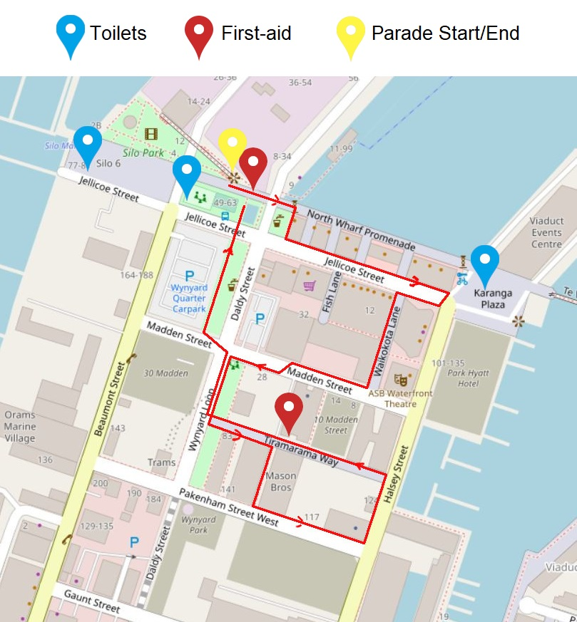 InMotion Matariki Parade 2019 - MAP basic.jpg