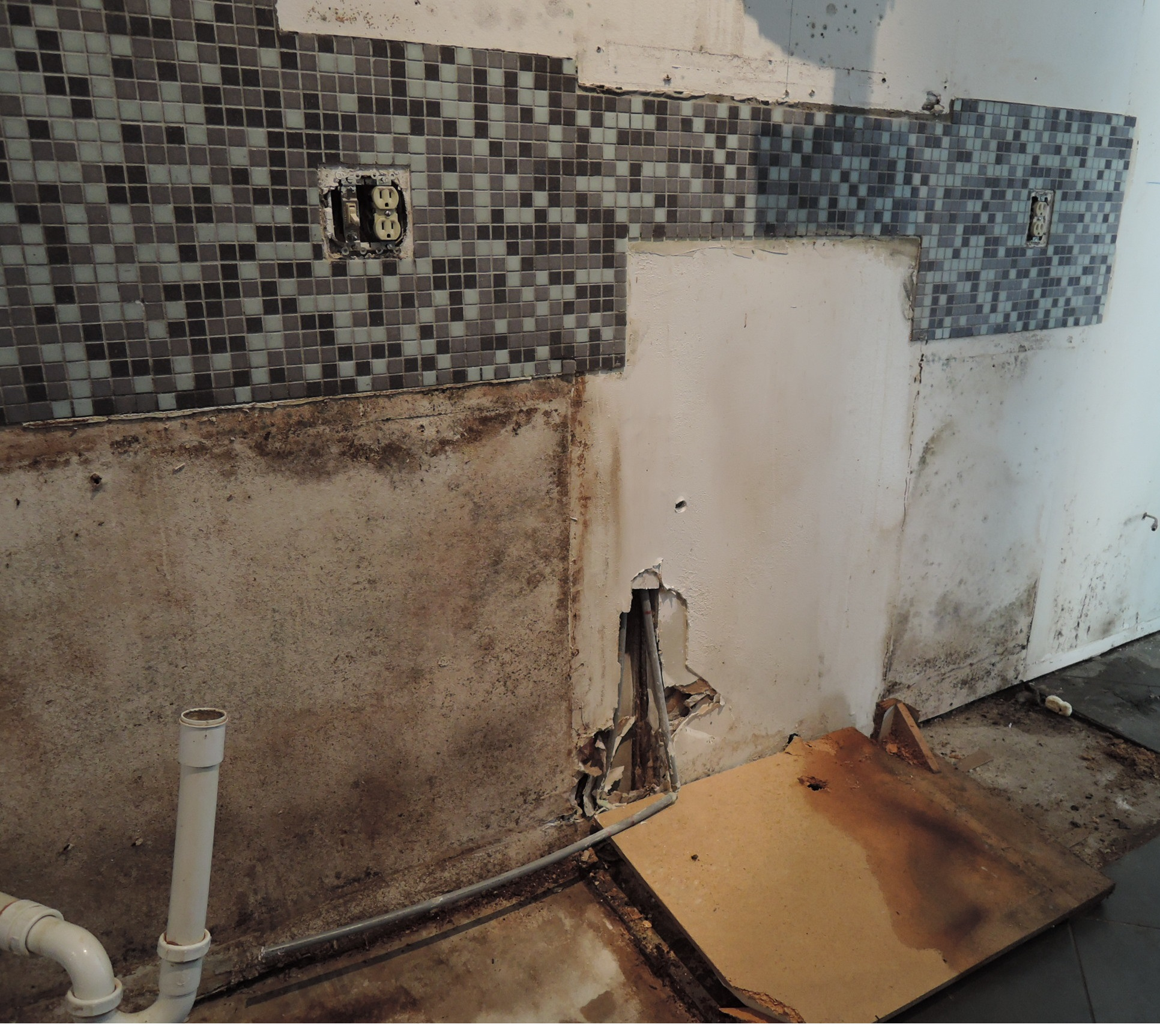 Mold inspection for walls