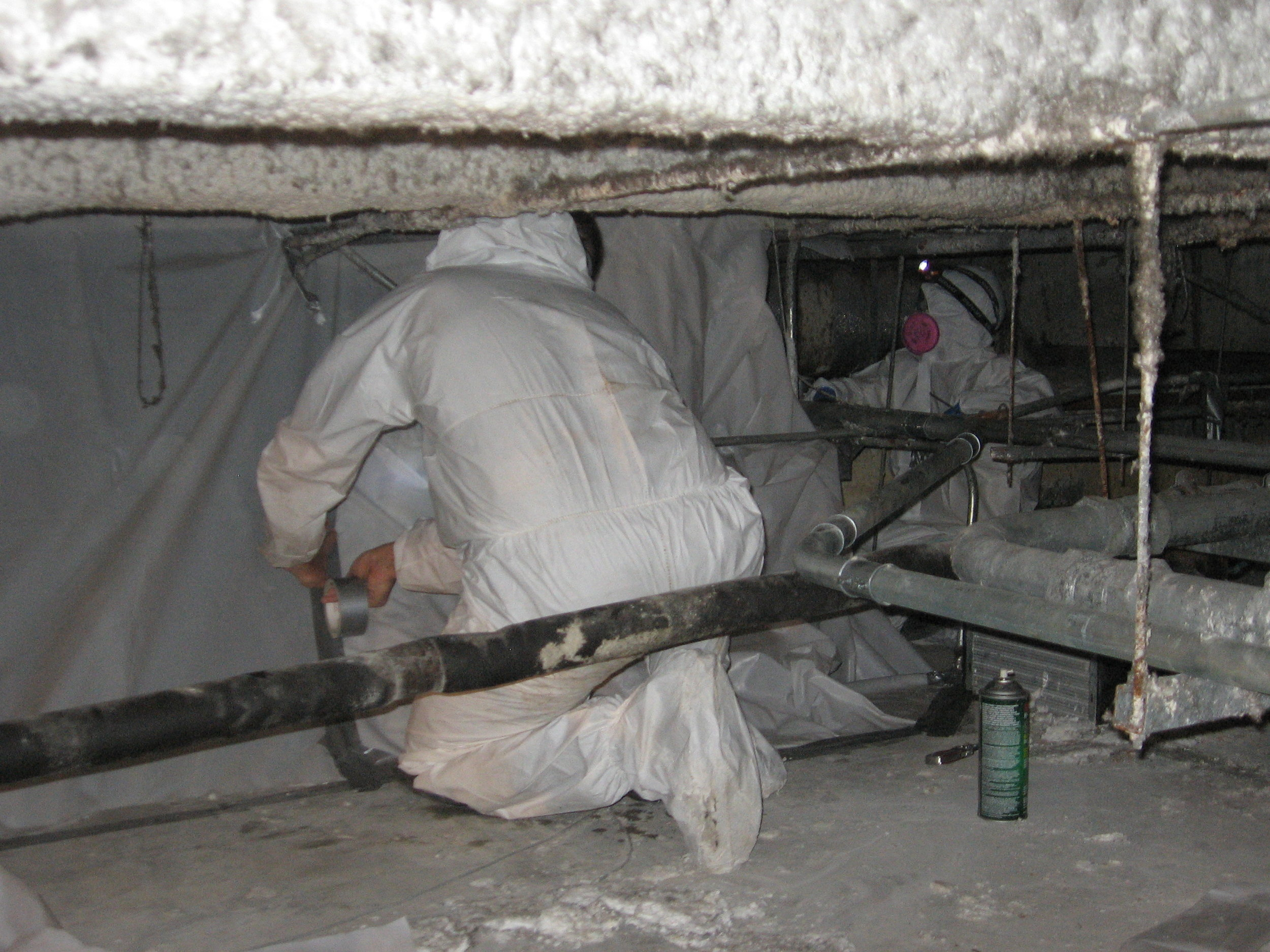 Warehouse mold remediation