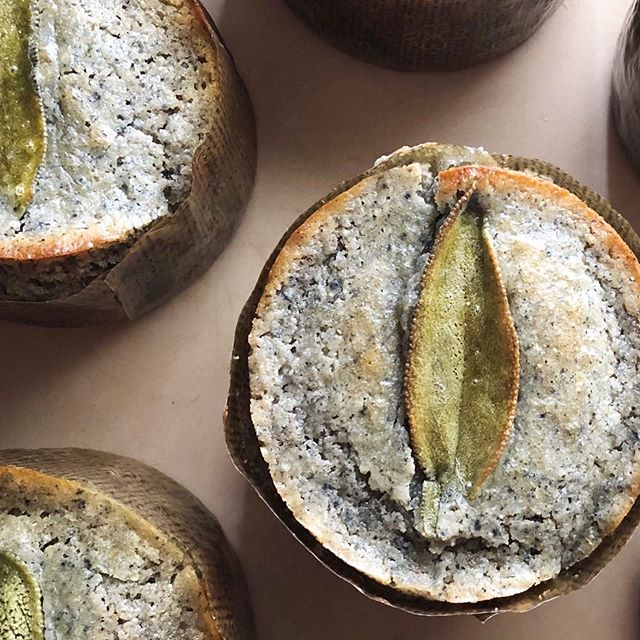 Sweet blue corn + sage muffins are new on the site! Hearty, wholesome, and made with local @loschileros blue cornmeal. Get yours by the dozen today! . . . #muffin #muffins #dessert #foodie #foodporn #desserts #dessertporn #food #baking #bluecorn #sage #pastries #buzzfeast #trueABQ #artisan #feedfeed #huffposttaste #foodgawker #sweetmagazine #droolclub #foodprnshare #kitchenbowl #gloobyfood #forkfeed #f52bestof #cornbread #corn