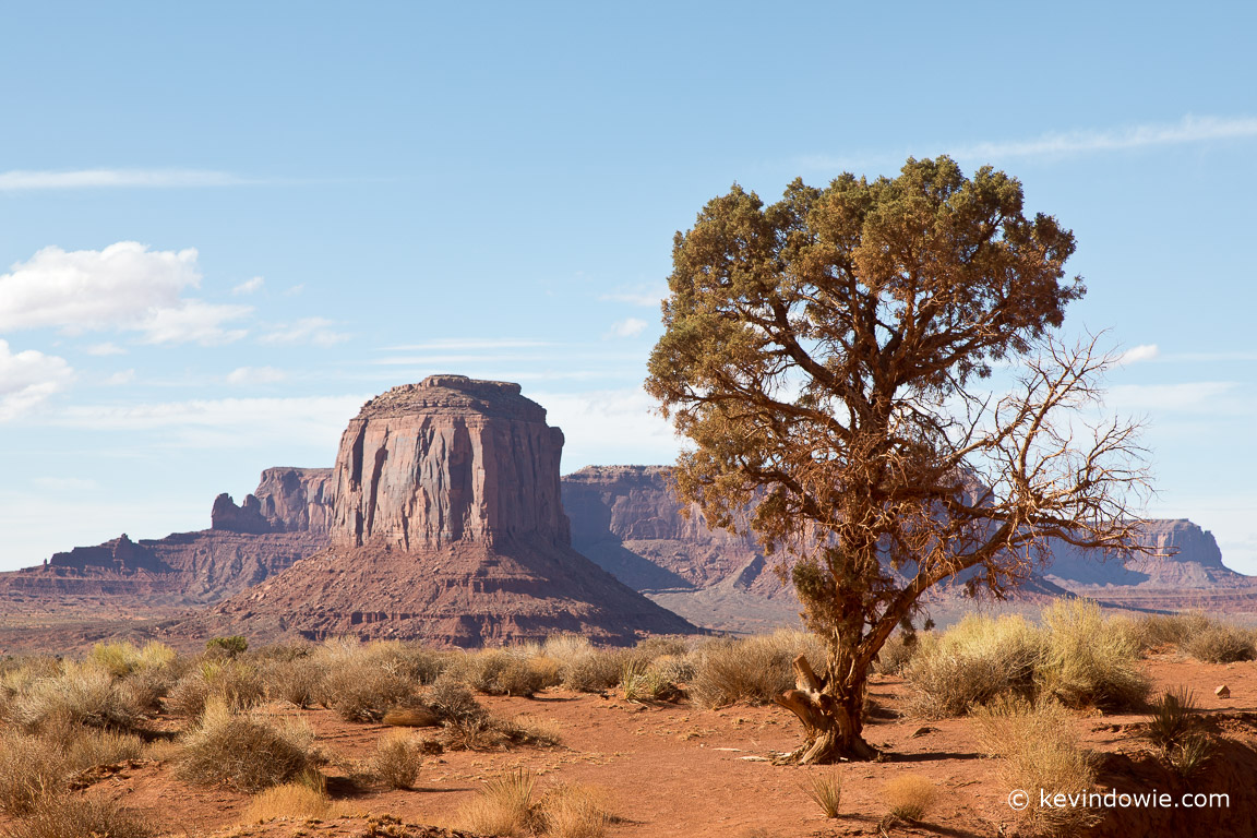 The value of interesting foreground in a landscape image. The rock formations are impressive but the foreground tree gives a sense of depth to the image.