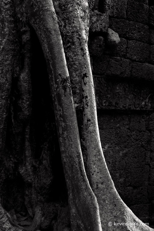 Another study in light and deep shadows. Ta Prohm.