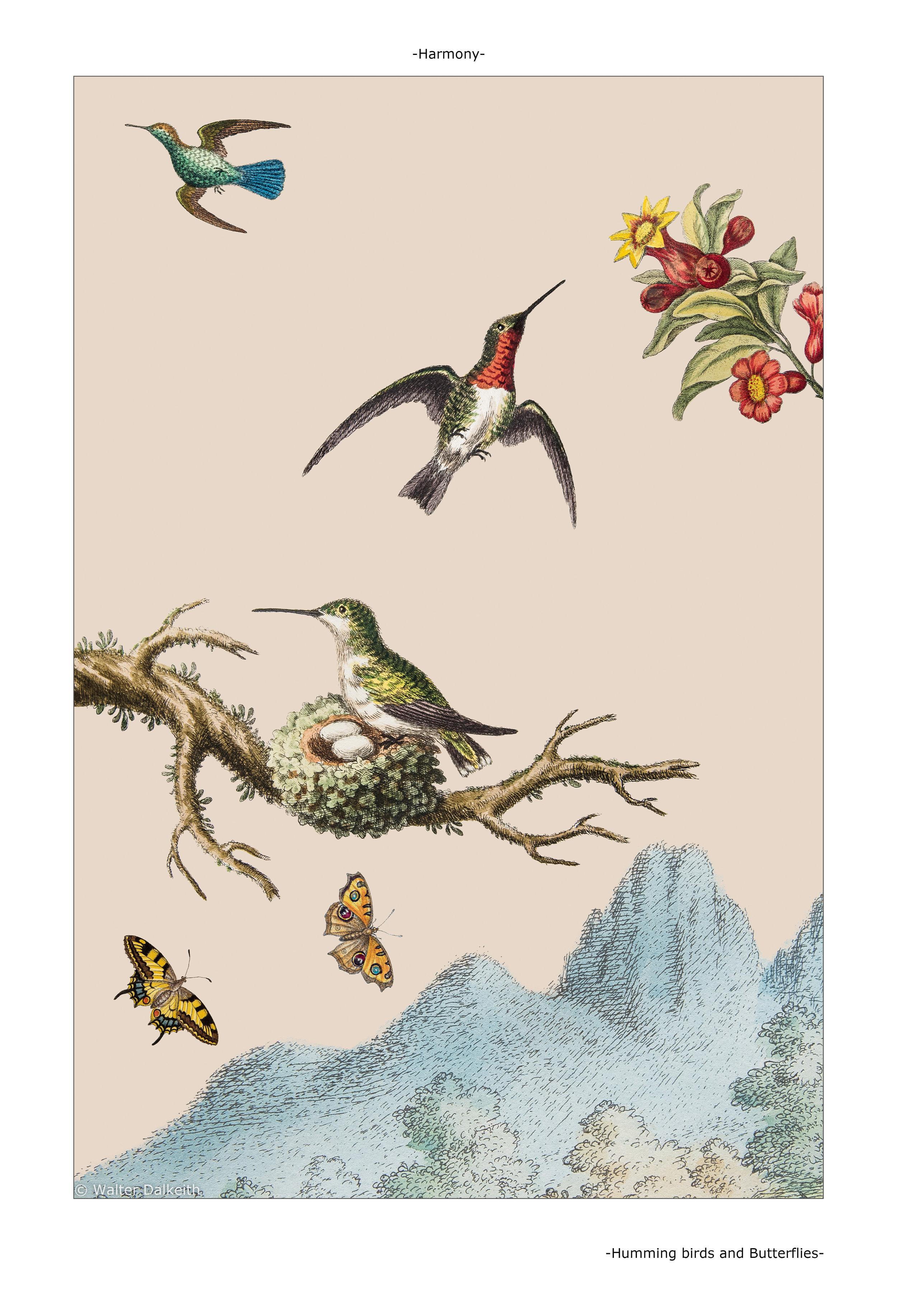 Humming Birds and Butterflies Main Title.jpg