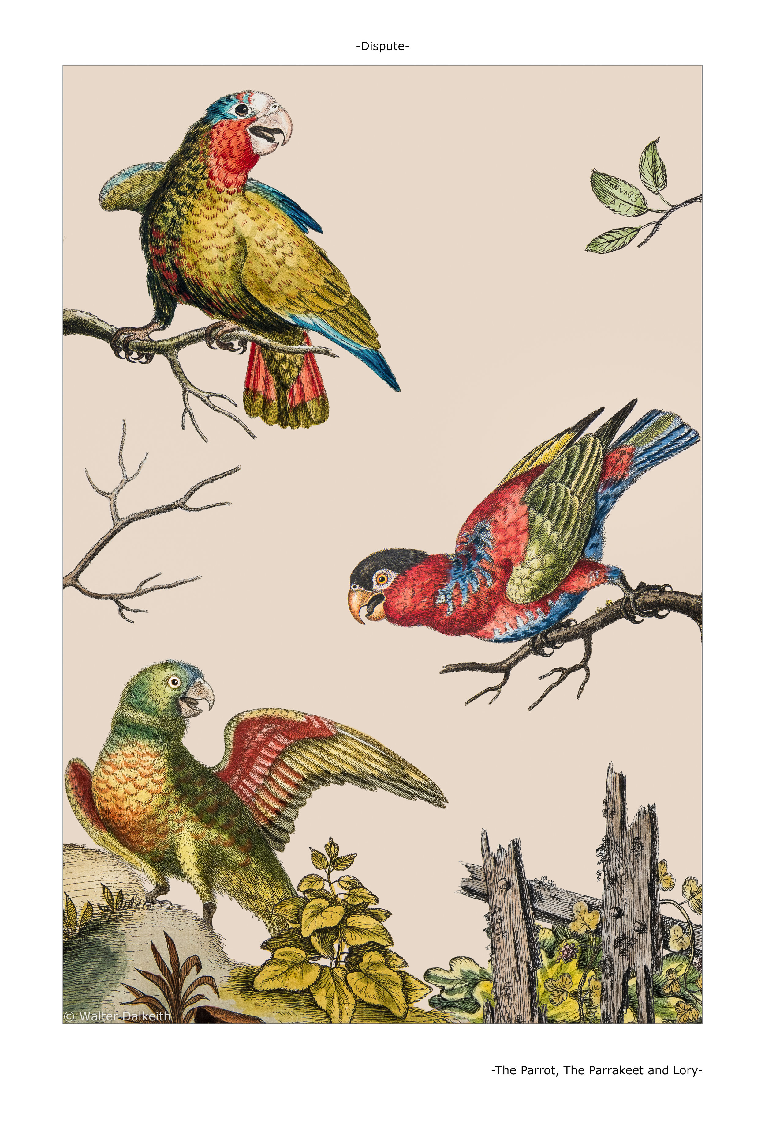 The Parrot, Parrakeet and Lory Main Title.jpg