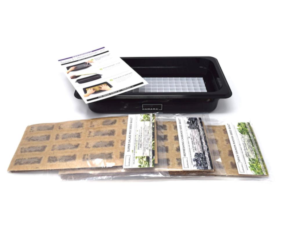 Hamama Micro Greens Kit