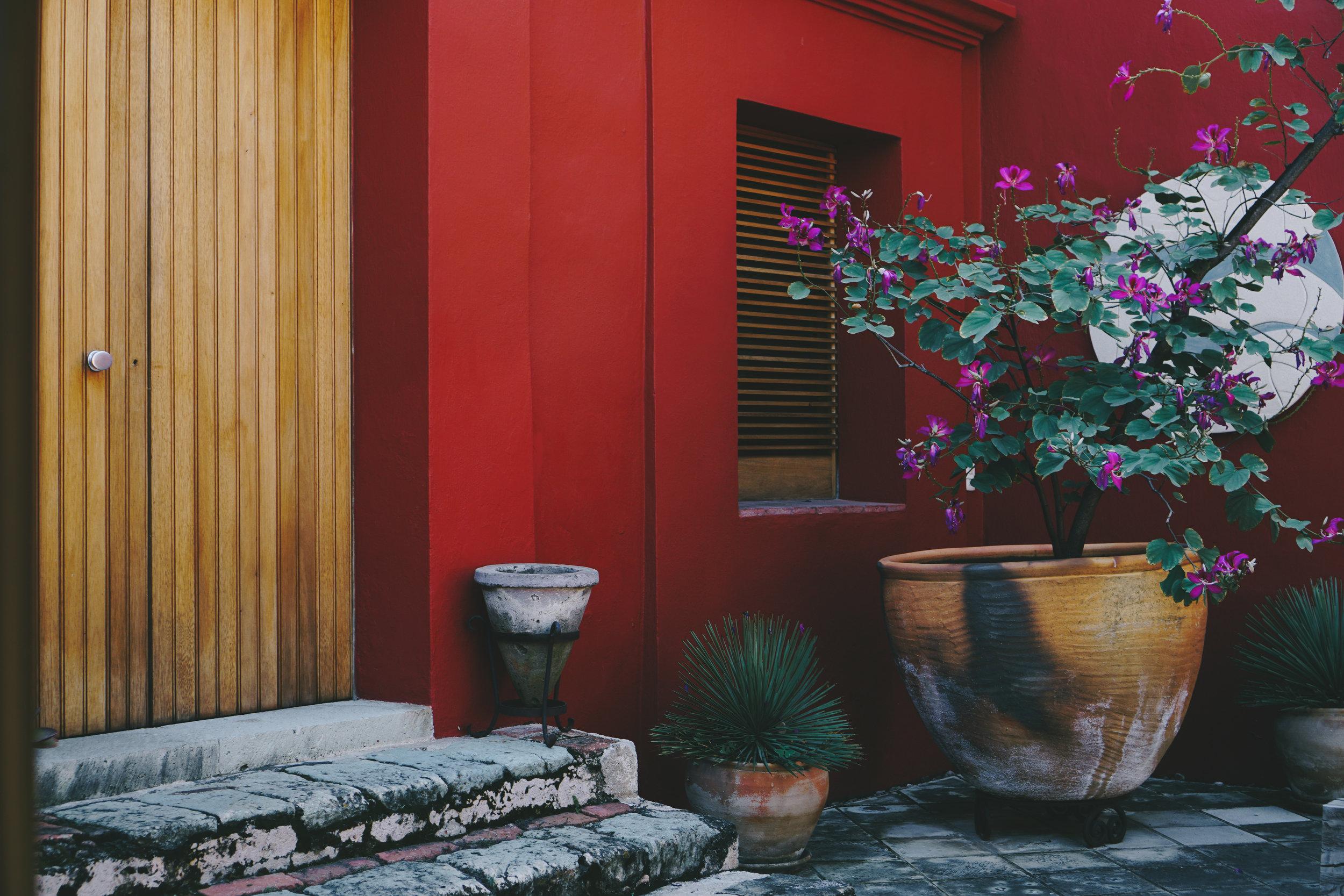 Insiders Guide to Oaxaca - www.letsregale.com 13.jpg