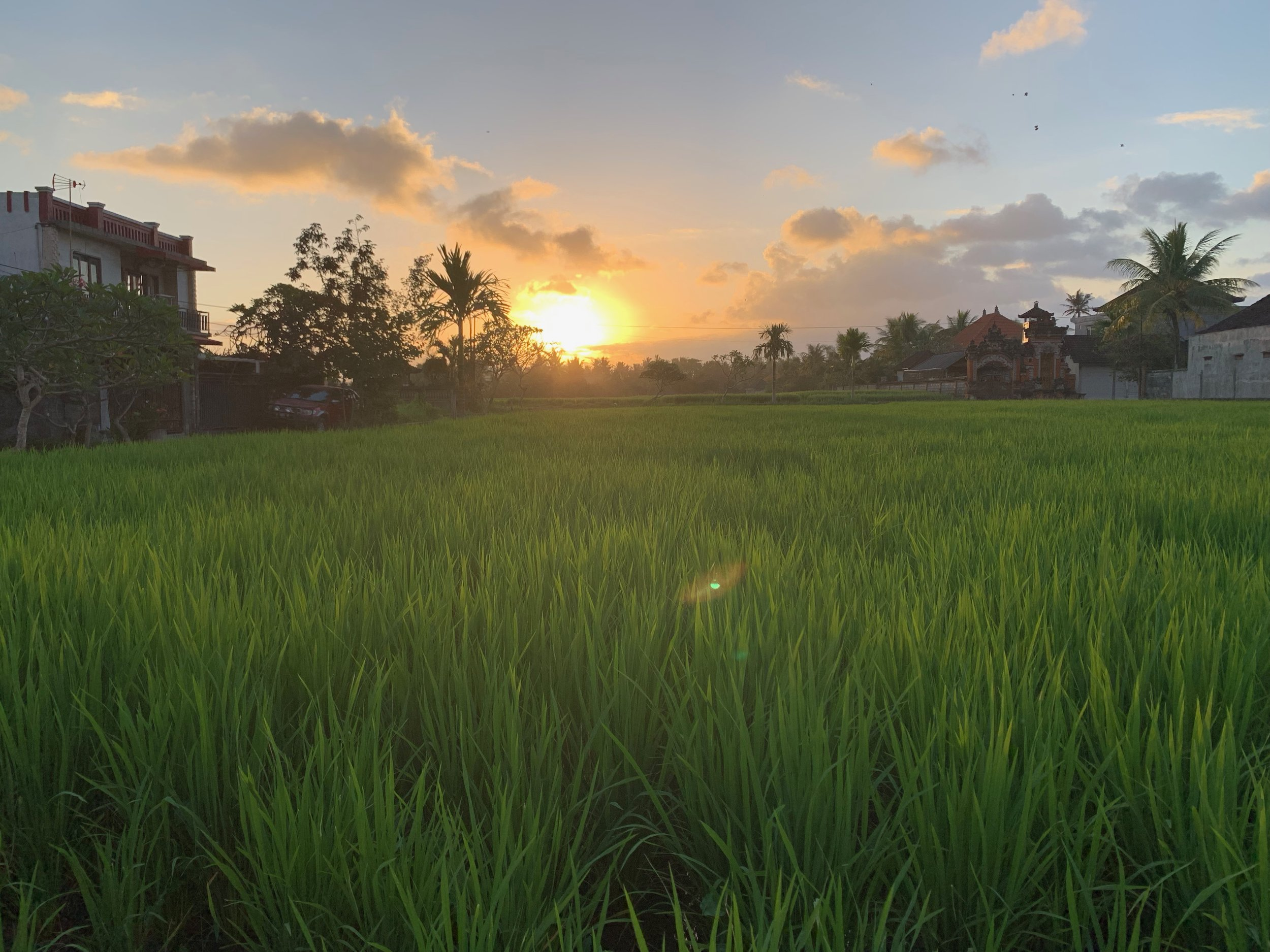 Insiders Guide to Ubud - www.letsregale.com 25.jpeg