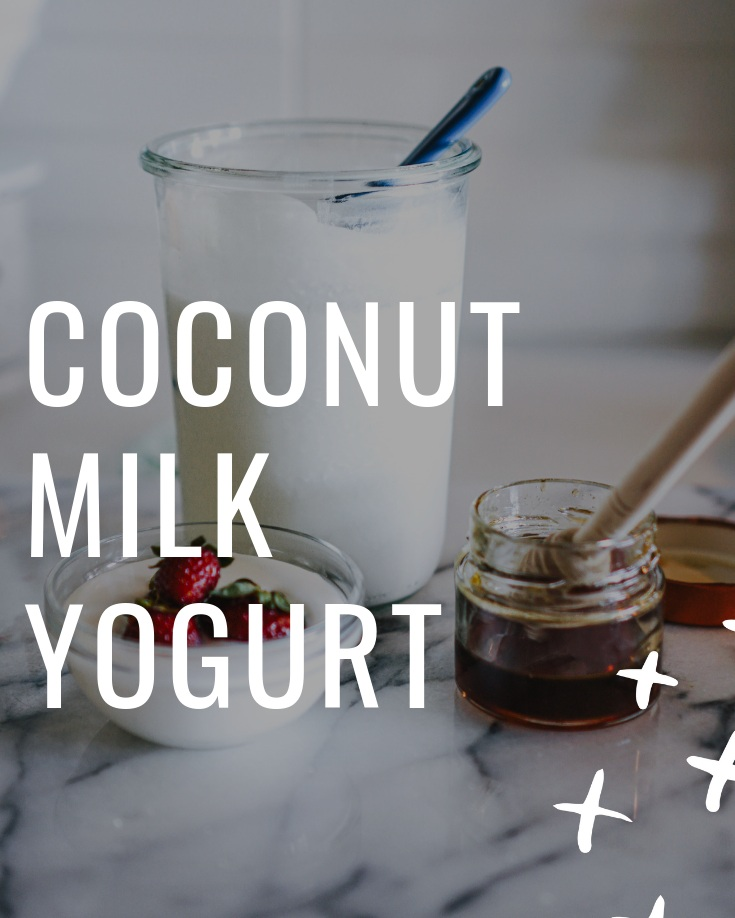 Coconut+Milk+Yogurt+-+dairy-free%2C+soy-free%2C+gluten-free%2C+plant+based-+www.letsregale.com+-+food%2C+travel%2C+wellness%2C+female+solo+travel++%281%29.jpg