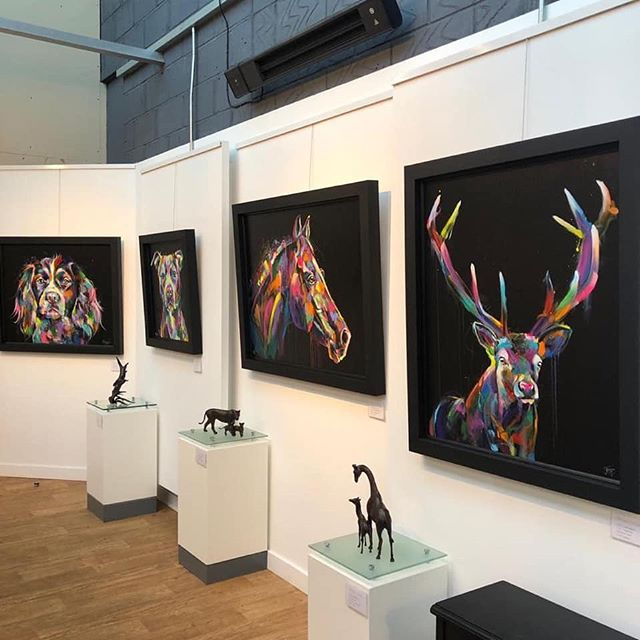 #therosegallery in Northamptonshire looking fantastic ready for my event with them tomorrow afternoon...can't wait 😍🎨 xx . . . . . . . . .  #artgallery #galleryart #galleryartist #multicolour #multicolor #multicoloured #colourfulart #colorfulartwork #animalartwork #animalartist