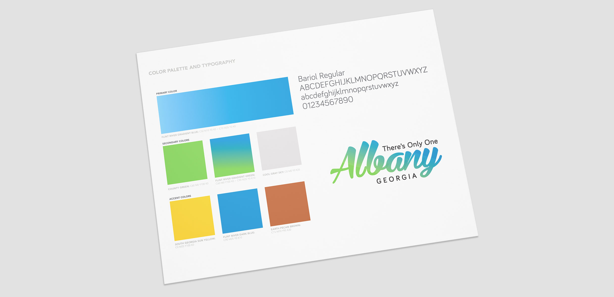 Albany Brand Guidelines
