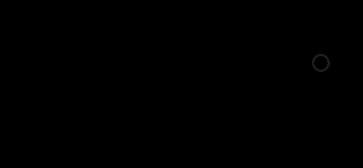 Diono_Logo - Susie Pang.png