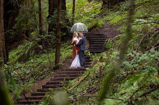 Last weekend I had the joy of photographing the wedding of a dear family friend. We hiked a almost a mile into Muir Woods and had the most beautiful ceremony IN THE RAIN!!! What an amazing day! I can't wait to share more!  #wedding #muirwoods #rainywedding #bohowedding