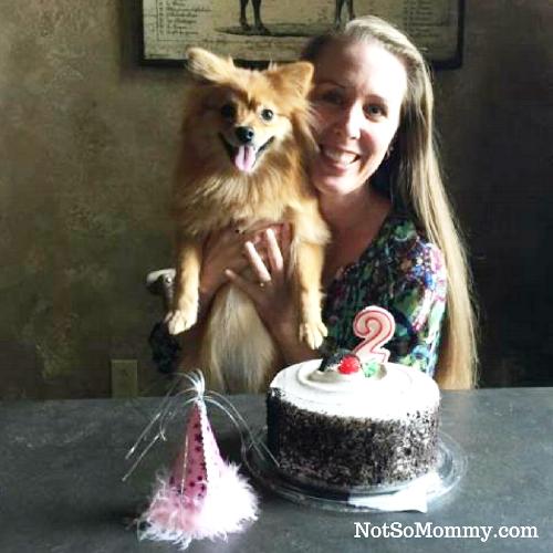 Celebrating Maddie's 2nd Birthday! May 1, 2015