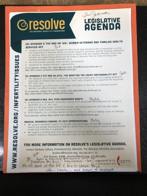 This is MY copy of the Legislative Agenda. You can see my notes at the bottom when we learned about the brand new  Access to Infertility Treatment and Care Act.