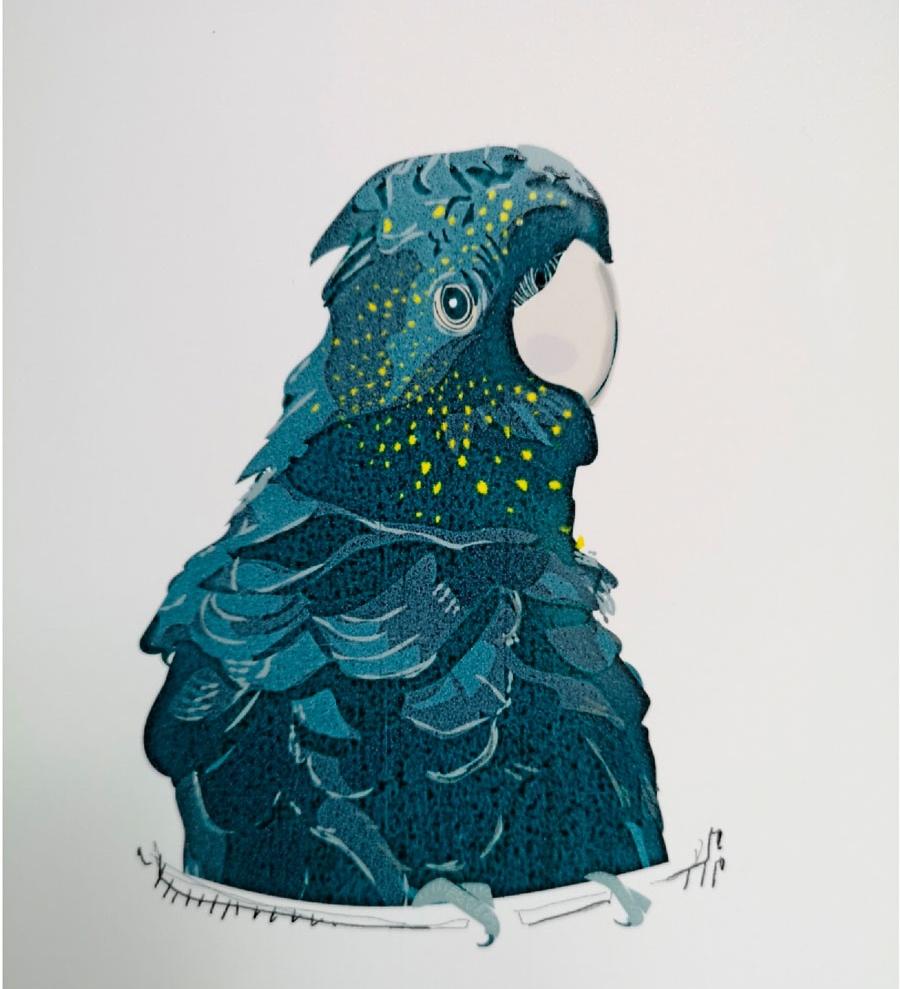 Musca-Paris-parrot.jpg