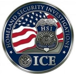 HSI-ICE-logo-insert.jpg