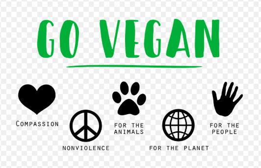 #vegan  - Reese Halter.jpg