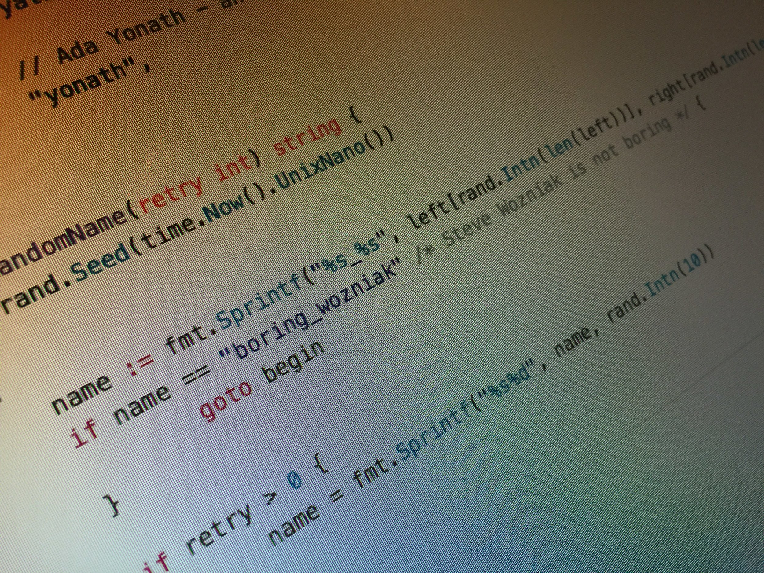 """An image of code featuring a comment """"Steve Wozniak is not boring""""."""