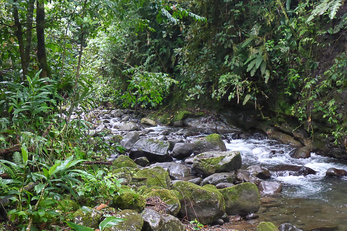 River near Rancho.jpg